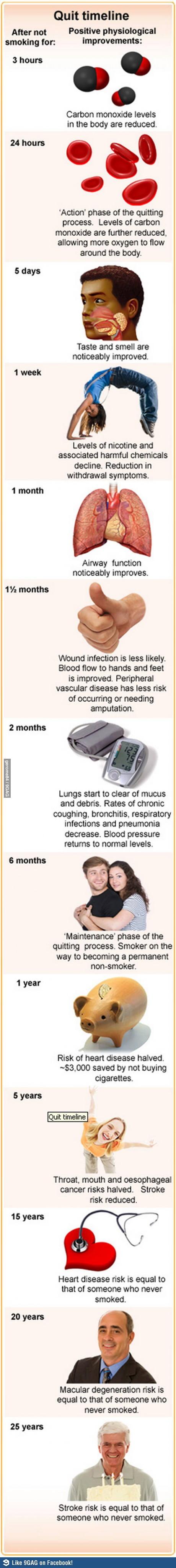 quit-smoking-timeline-5